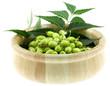 bol de neem, plante médicinale, fruits et feuilles, fond blanc
