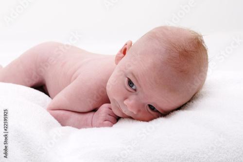 B b nu couch sur le ventre photo libre de droits sur la banque d 39 images image - Peut on coucher bebe sur le ventre ...
