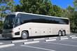 New Bus - 22596518