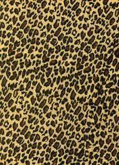 Leopard texture