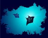 Fototapeta streszczenie - niebieski - Ryba
