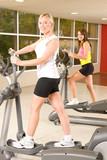 Girls burning calories on treadclimber poster