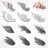 Fototapety Vector set of wings