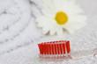 higiene bucal, concepto