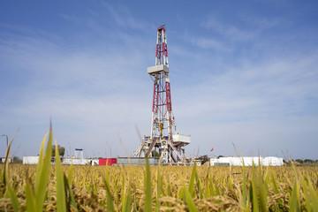 Lnad drilling rid