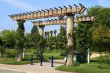 Roseraie du parc Borely à Marseille