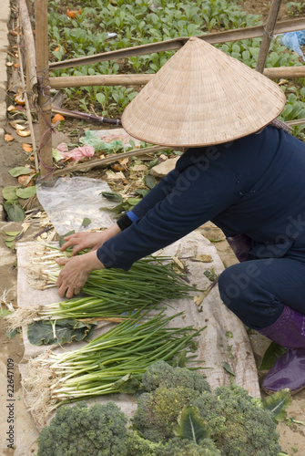 Vietnamese woman at market