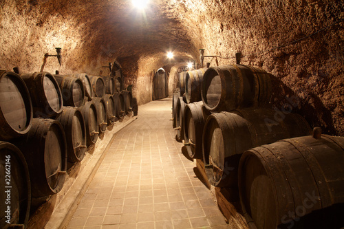 Corridor in winery 22662146