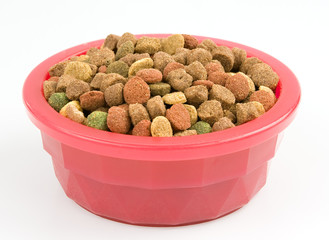 Dried dog food in a pink bowl isolated on white