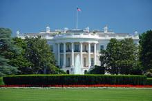 "Постер, картина, фотообои ""The White House in Washington DC"""