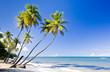 Northern coast of Trinidad, Caribbean