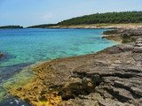 Croatian coast. poster