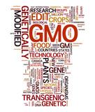 GMO Transgenic Food poster