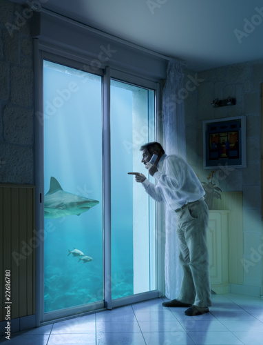 grand aquarium dans sa maison requin photo libre de droits sur la banque d 39 images fotolia. Black Bedroom Furniture Sets. Home Design Ideas