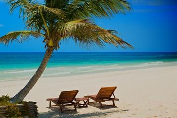 palm beach chairs tropical sea, palm beach chairs tropical sea