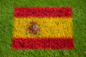 flag of spain on grass