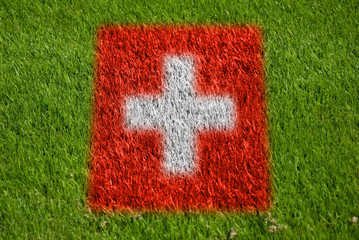 flag of switzerland on grass