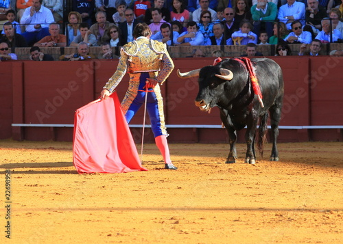 Bull fight at Seville