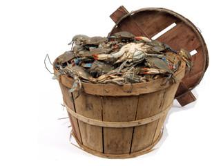 bushel basket of crabs 3
