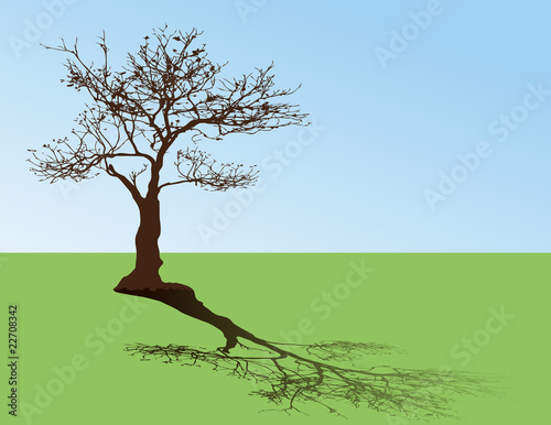 vector of tree on mead