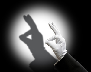 Rabbit shadow puppet