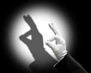 Rabbit shadow puppet
