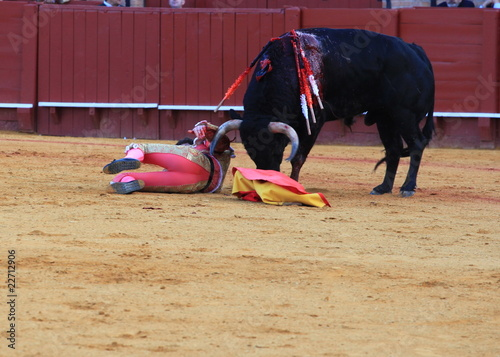 Matador injured at Seville bullfight
