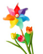 Girandola in movimento e tulipani