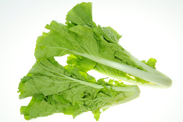 Green Vegetables On White Background