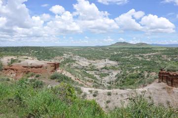 paesaggio tanzania
