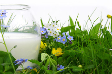 verre de lait,fresh milk