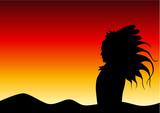 sunset apache poster
