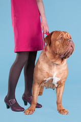 Girl with a big dogue