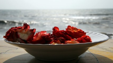 thoughtful days  (rose leaves and a beautiful ocean view)