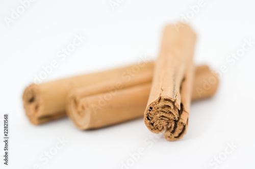 Cinammon bark cinnamomum zeylanicum