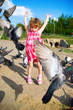 Girl and pigeons