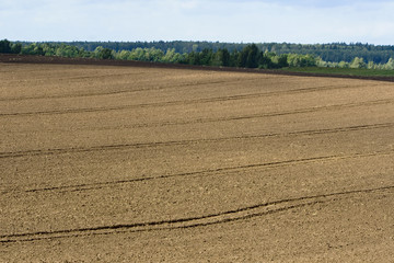 Autumn ploughed field near the forest