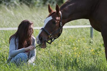 Cavallo al paddock 24
