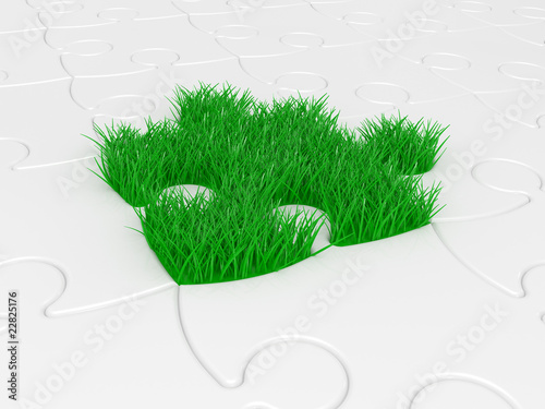 puzzle with green grass