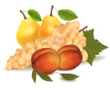 Vector illustration. Peaches, a pears and grapes