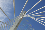 Abstract Detail of Millennium Bridge in Podgorica, Capital city poster