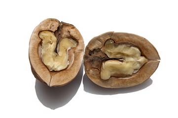 walnut cracked