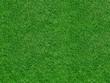 Leinwandbild Motiv Rasenfläche