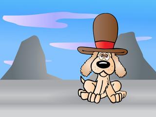 Puppy wearing hat