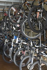 Bicycles on display in a bike store