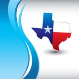 texas lonestar state poster