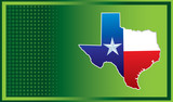texas state green checkered background poster