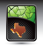 texas state green cracked background poster