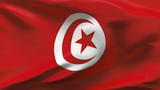 Creased Tunisia satin flag in wind with seams and wrinkle poster