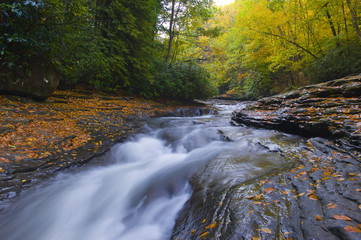 Beautiful flowing stream in Autumn